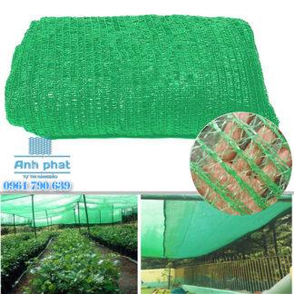 lưới lan thái màu xanh