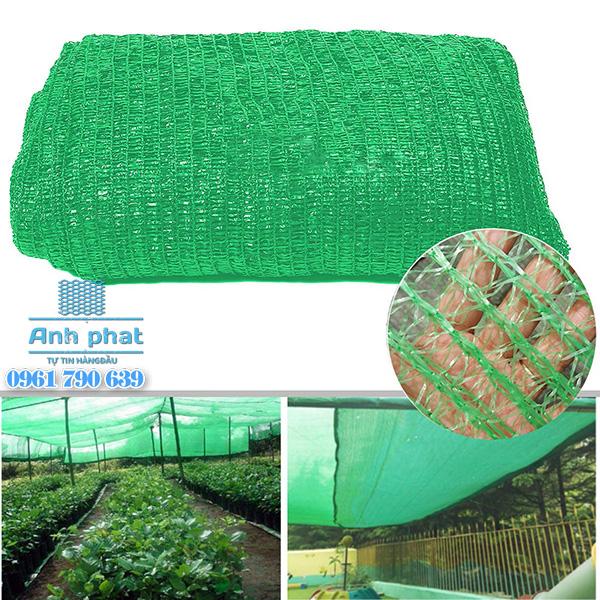 Lưới lan Thái Lan xanh