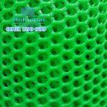 Lưới nhựa xanh